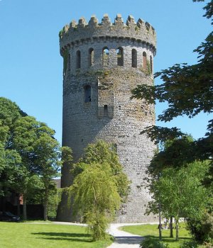 Nenagh Castle