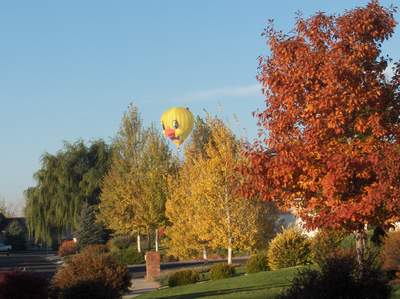 Balloons over Greeley